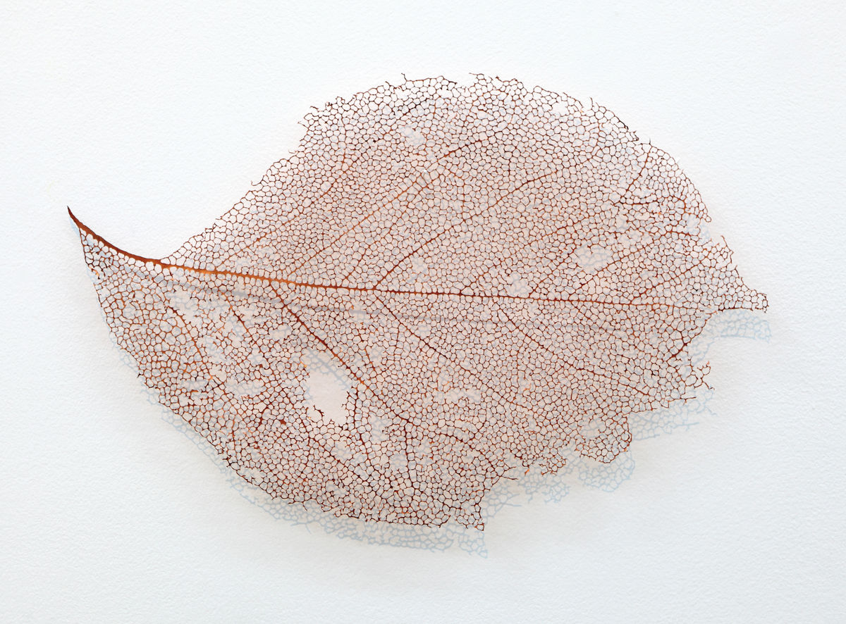 Léa Barbazanges - Copper leaf-1