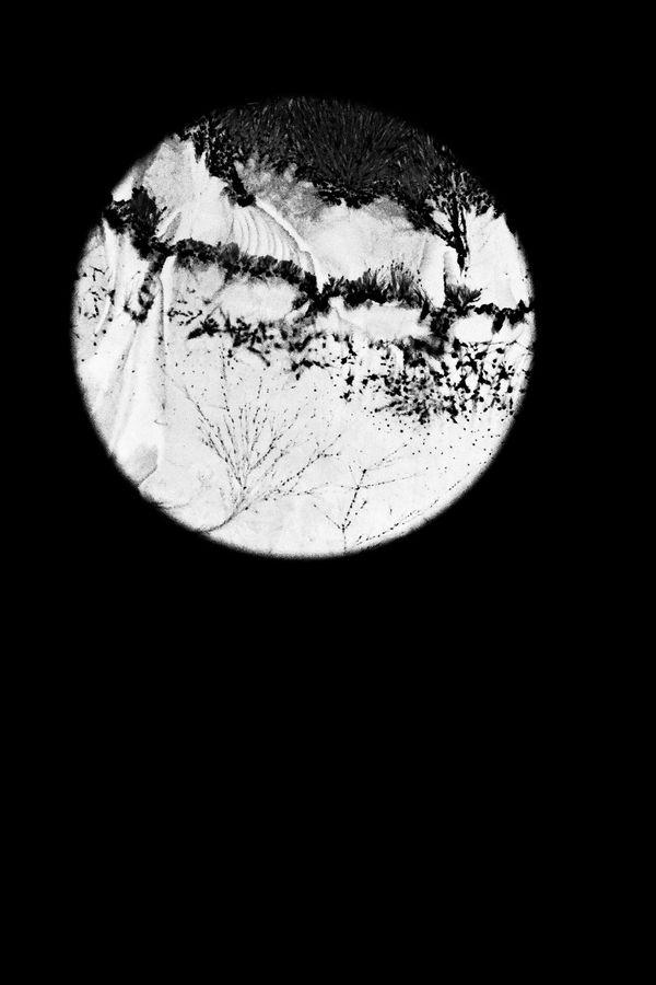 Léa Barbazanges - Optiques