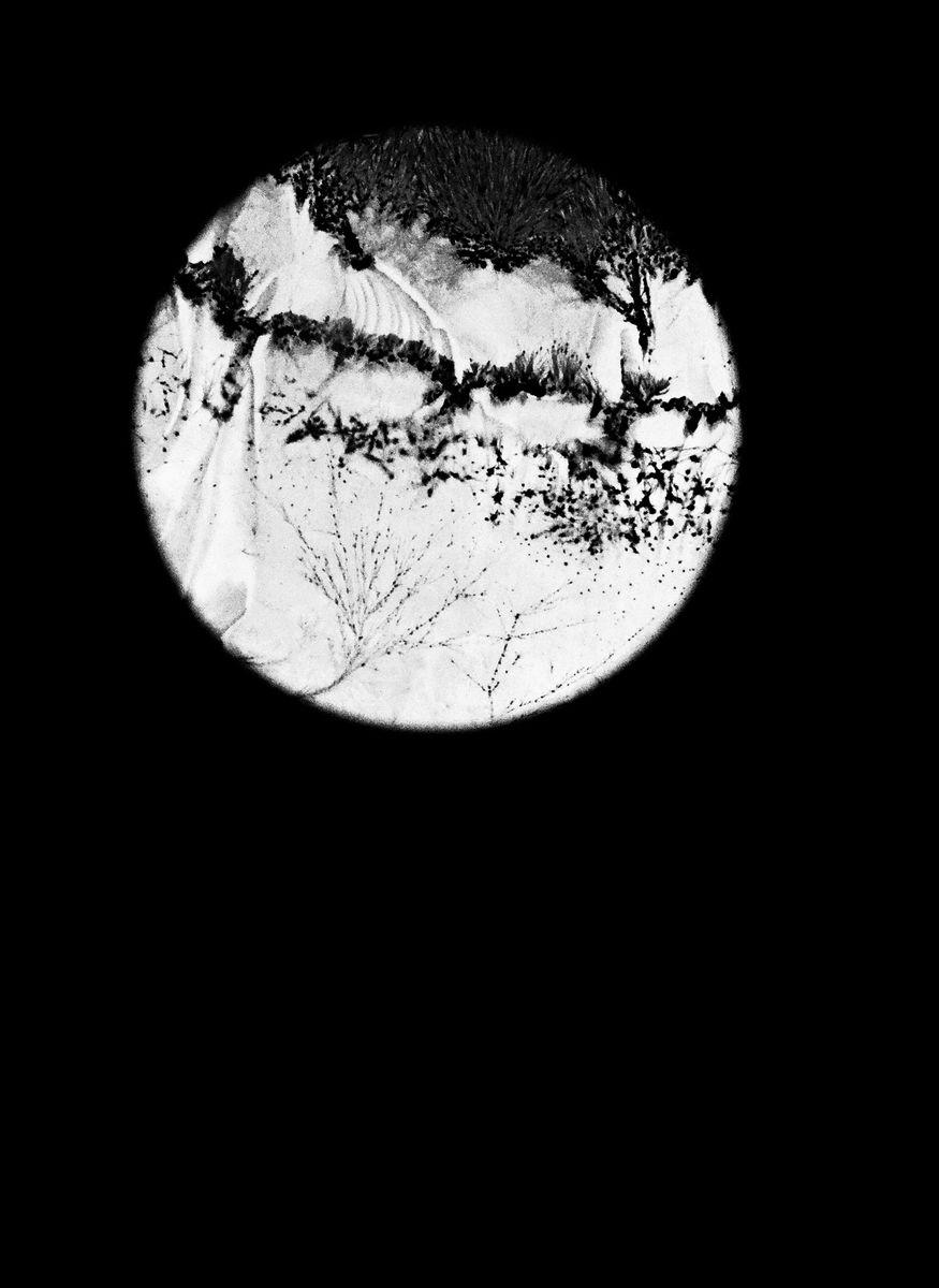 Léa Barbazanges - Optiques-1