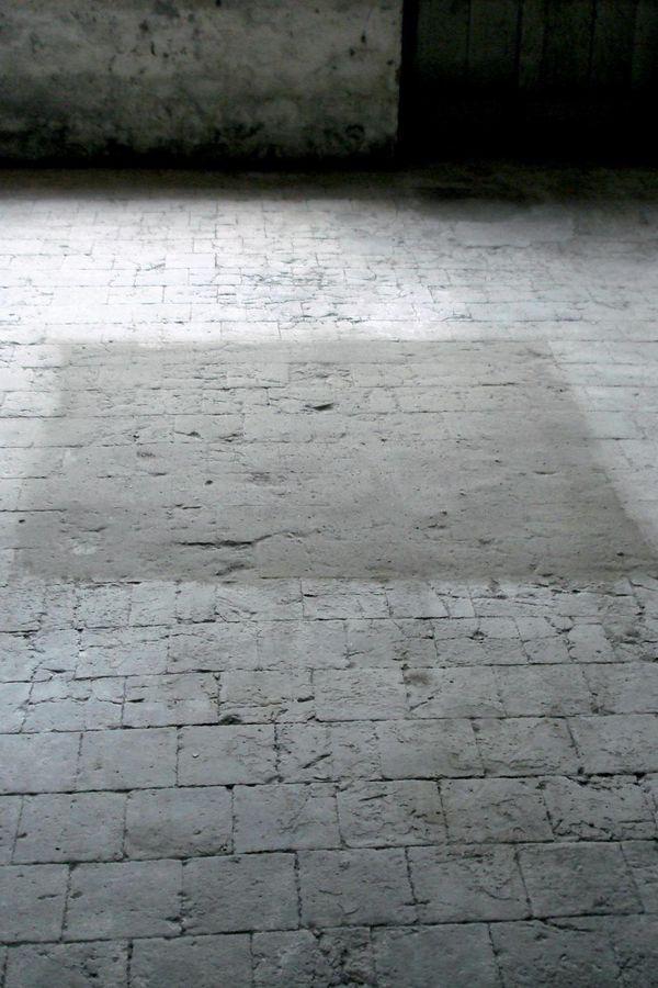 Léa Barbazanges - Carré de poussière